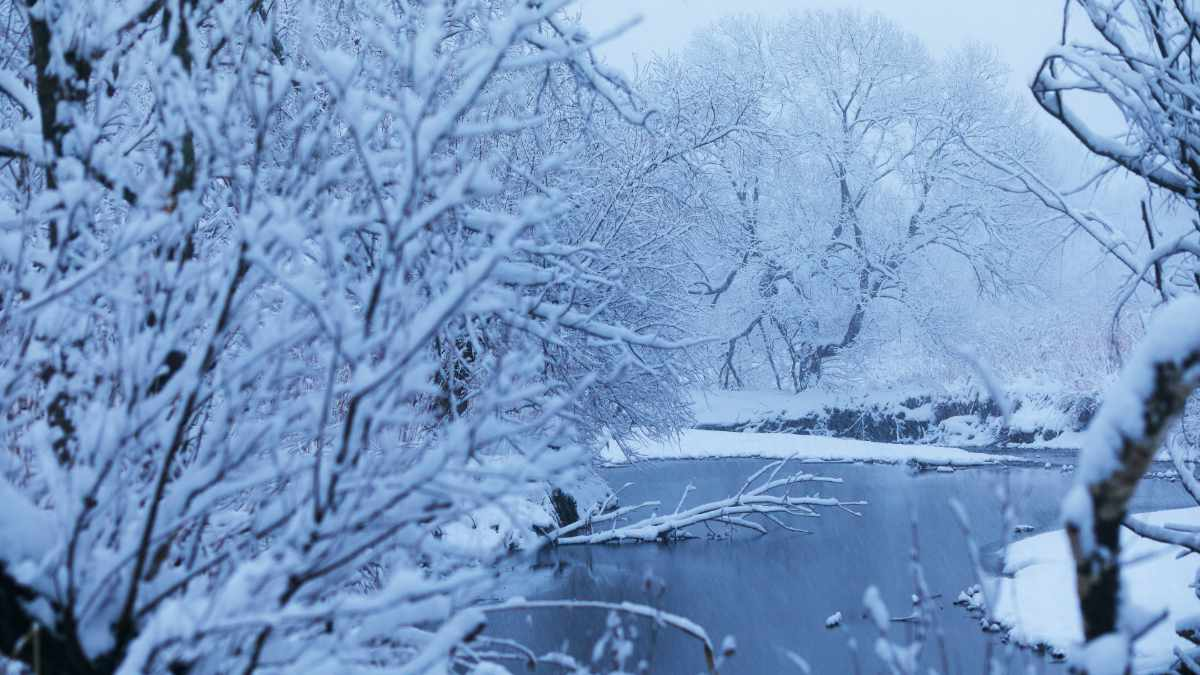 Die Eiskälte im Februar