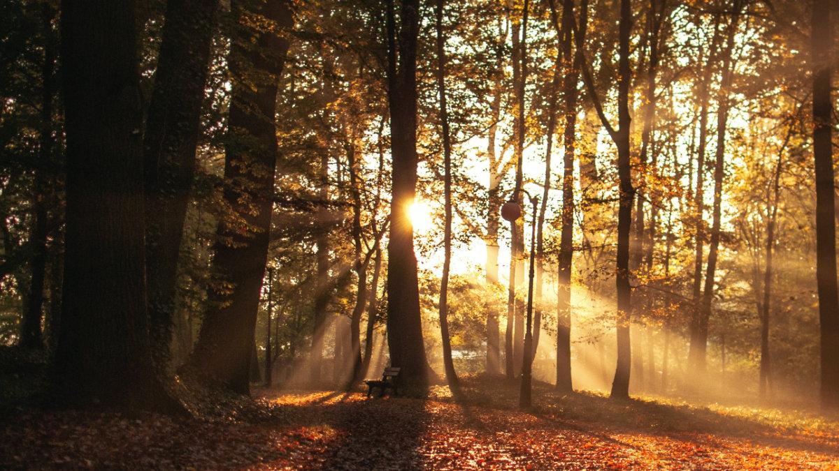 Sommerliche Tage im Herbst